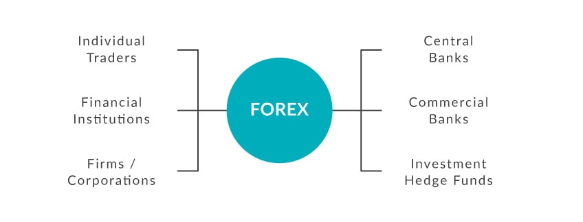 Who Trades on the Foreign Exchange Market?