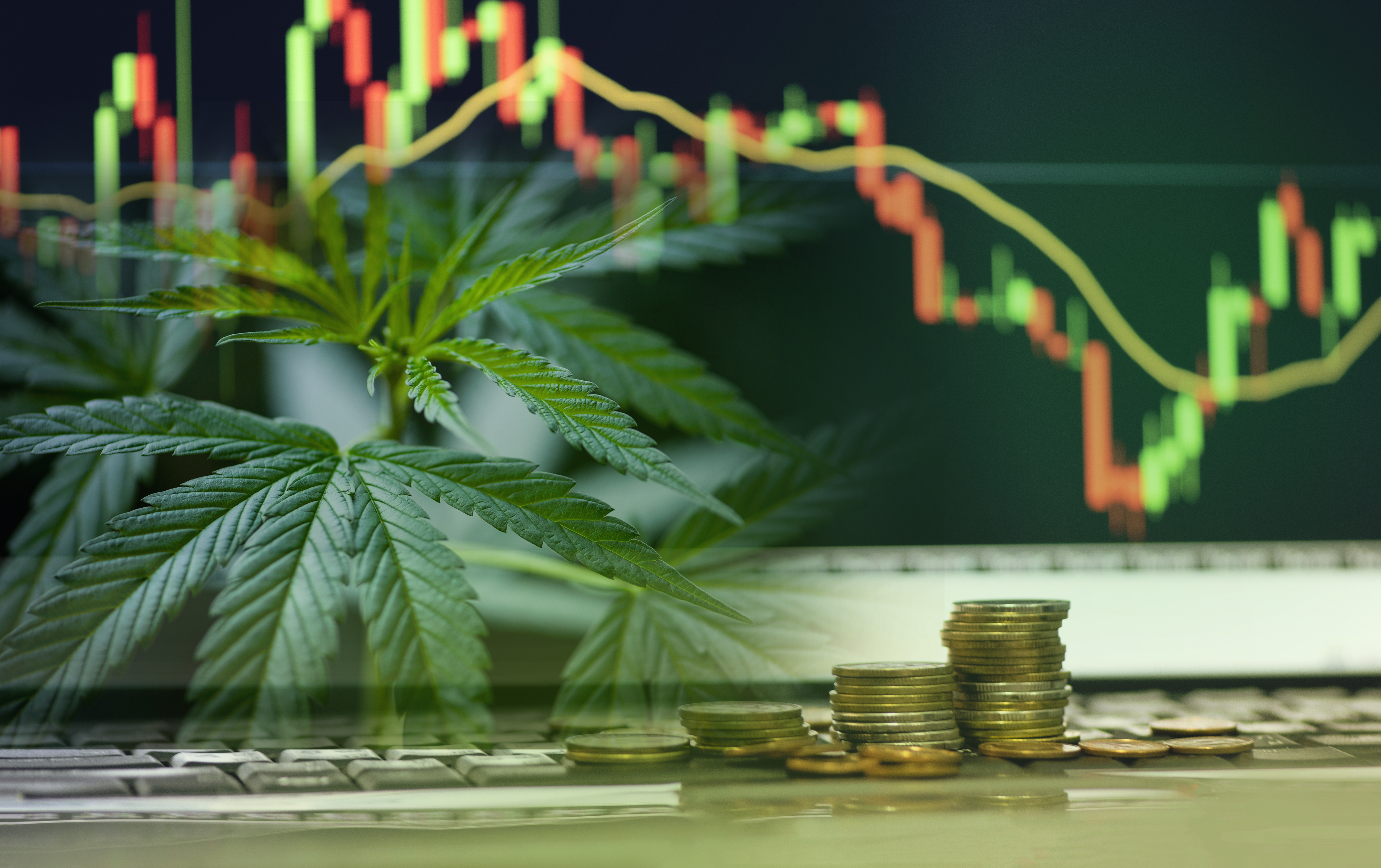 How to trade Cannabis shares CFDs
